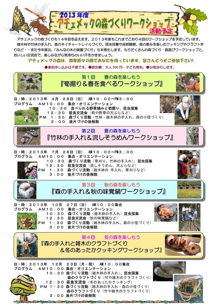 Achamec2013seasonplan