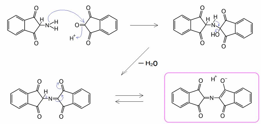 Ninhydrin_reaction_003b_900x428