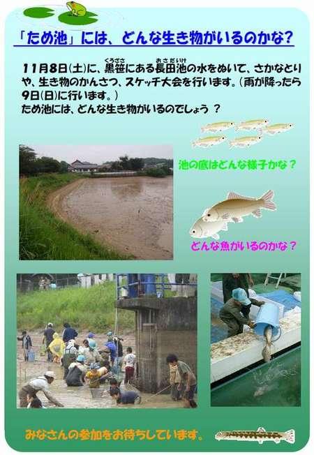 Ikenokaiboshi20081108c