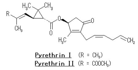 Pyrethrin_2