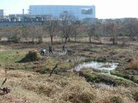 Saroyama20101205bdscn1796