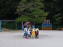 P1240013_800x600