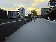 Dsc_2699_800x600