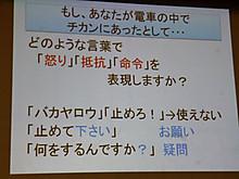 P1250876_800x600