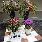 Dsc02238_800x800