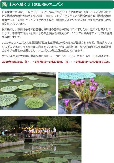 Onibasu20200518